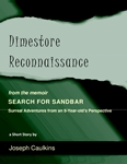 Dimestore Reconnaissance ~ from the memoir SEARCH FOR SANDBAR